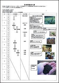 えごま栽培暦